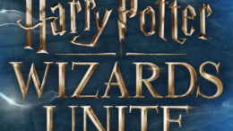 Harry Potter Wizards förenar