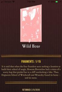 HPWU - Wild Boar portrait
